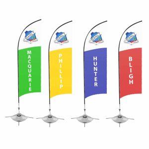 Wind Flag 1